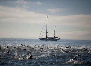 plávanie, more, triatlon