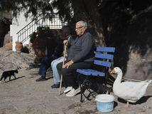 dôchodca, lavička, oddych, Grécko, dedko, kačka, mačka
