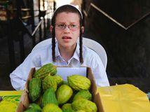 Izrael, Žid, ortodoxný, citrusy, ovocie