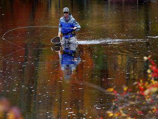 rybár, rybačka, jazero, rybník, rieka, New Hampshire