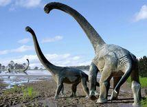 dinosaurus, dinosaury