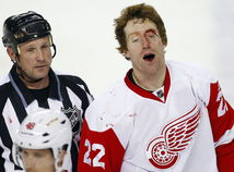 mike commodore, detroit red wings