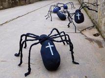 pavúky, múzeum, Halloween,