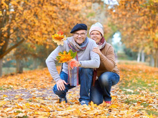 dôchodok, penzia, jeseň, les, stromy, lístie, dôchodca