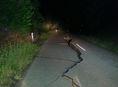 Nový zéland, zemetrasenie, zničená cesta,