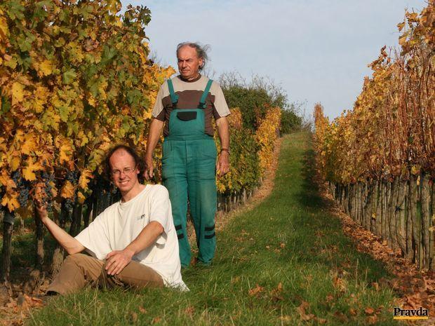 Obrázok Rodí sa Lavína. Nové vinárske eso