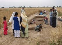 India, vykopávky