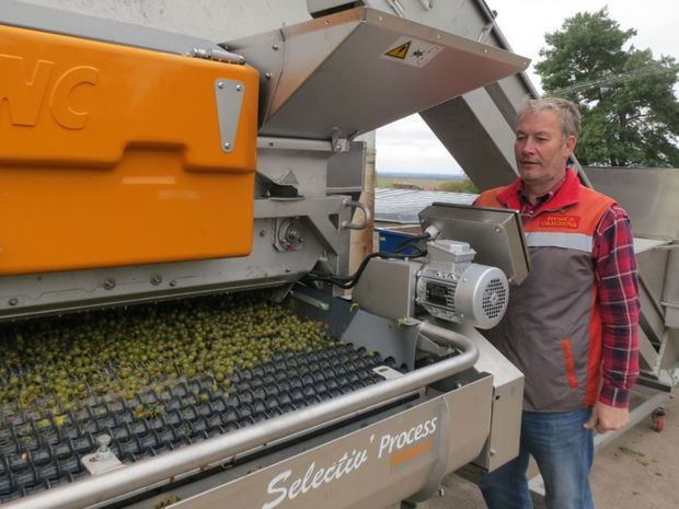 Obrázok Výnimočné vína Vihorlatu – Pivnica Orechová