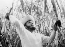 Fidel Castro, kuba