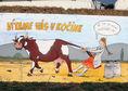 krava, karikatúra, Kočín, farma, poľnohospodárstvo
