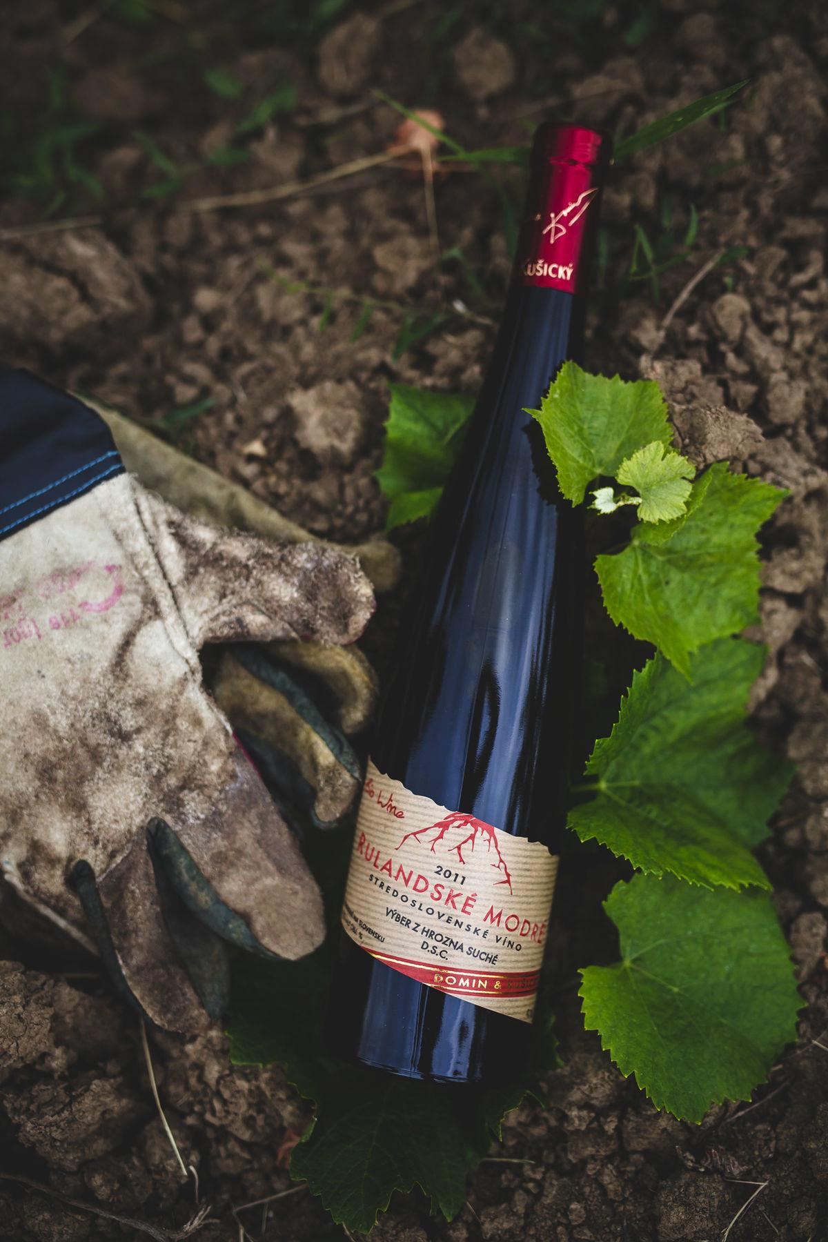 Víno v objatí zeme.