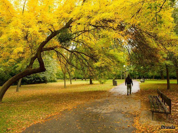 sad janka krala, bratislava, petrzalka, park, parky, historicke parky, zelen, jesen, listy