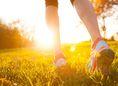 nohy, chôdza, lúka, prechádzka, turistika