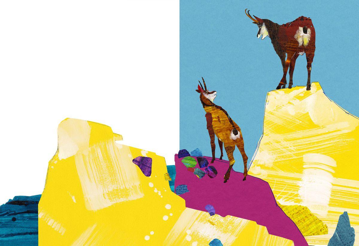 Ilustrácia od Ľuboslava Paľa z knihy Kamzíkov veľký skok.