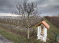 dunajska luzna kaplnka kriz Vozar sad dobre jablka strom