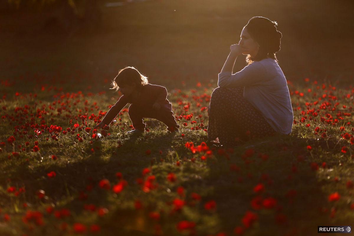 dieťa, hra, matka, kvety