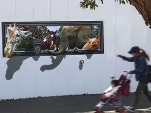 zvieratá, animácia