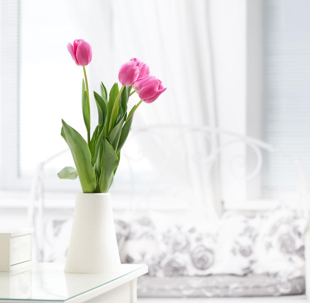 Aj pár kúskov fialových tulipánov oživí interiér a pozve k vám jar. V bielej váze ich dokážete umiesniť do akéhokoľvek interiéru.