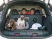 Nissan X-Trail 4Dog Concept - 2017