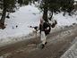 Pakistanskí dovolenkári smerujú do pakistanského lyžiarskeho strediska.