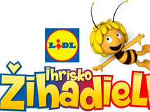 inzercia LIDL