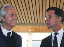 Holandsko, voľby, Wilders, Rutte