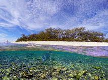 ostrov, koraly, more, ostrov Lady Elliot Island, Austrália