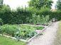 Zeleninový kút v okrasnej záhrade.