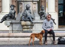 počasie, pes, človek, lavička