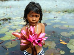 dieťa, Kambodža, lekno