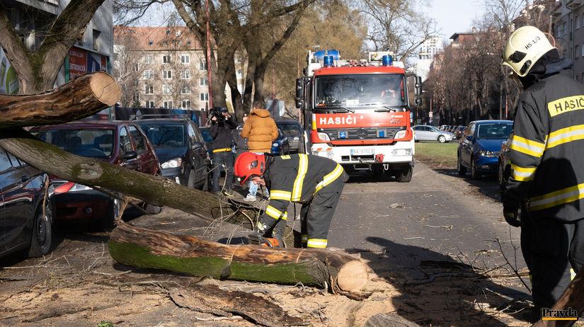 VIDEO  Vietor v Bratislave vyvracal stromy - Regióny - Správy - Pravda.sk aa737d331ed