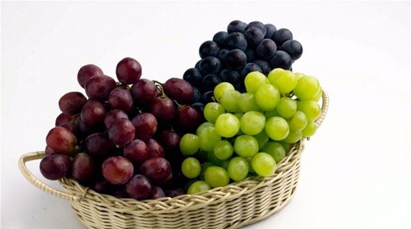 stolovanie - hrozno - ovocie