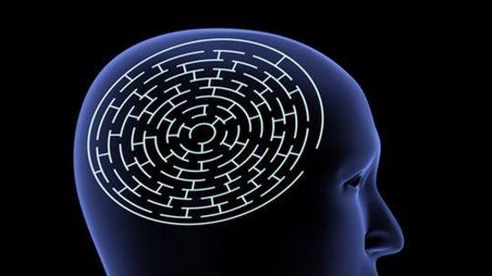 hlava - mozog - labyrint
