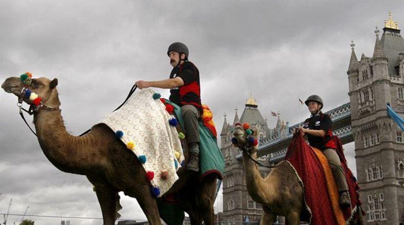 Londýn, ťavie preteky