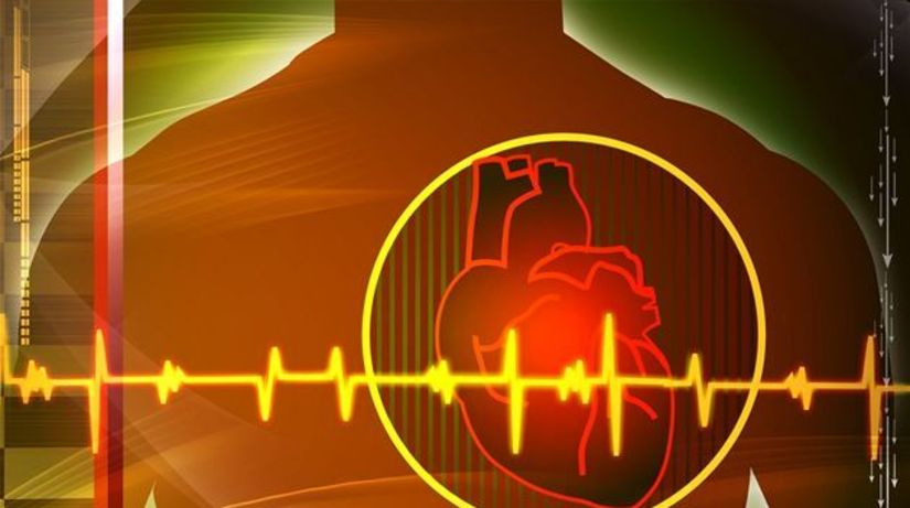 srdce, rytmus, ekg