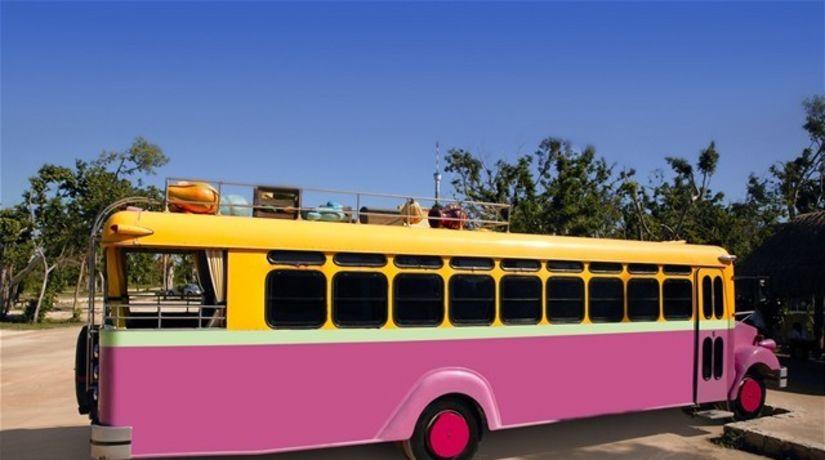 ružový autobus