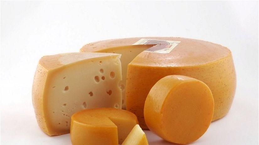 syr - bielkovina - mliečny výrobok - baktéria -...