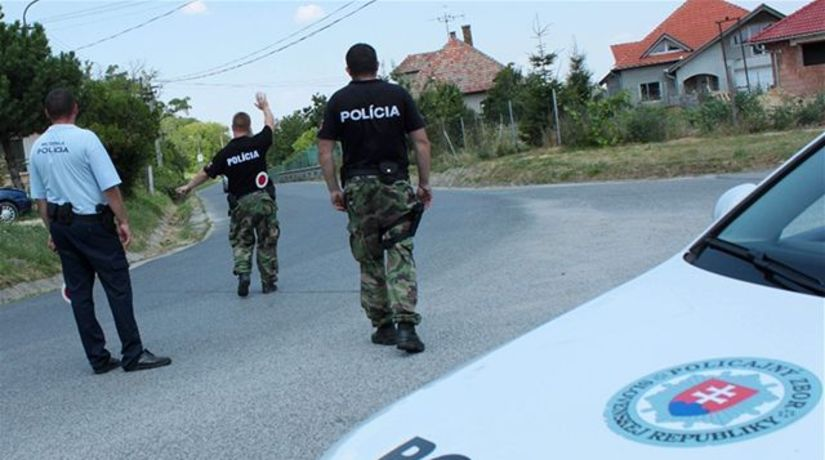 Polícia, Nitriansky hrádok