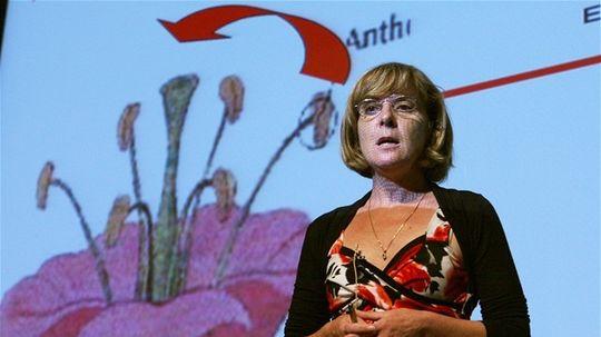 detská univerzita - prednáška o rastlinách, Blehová