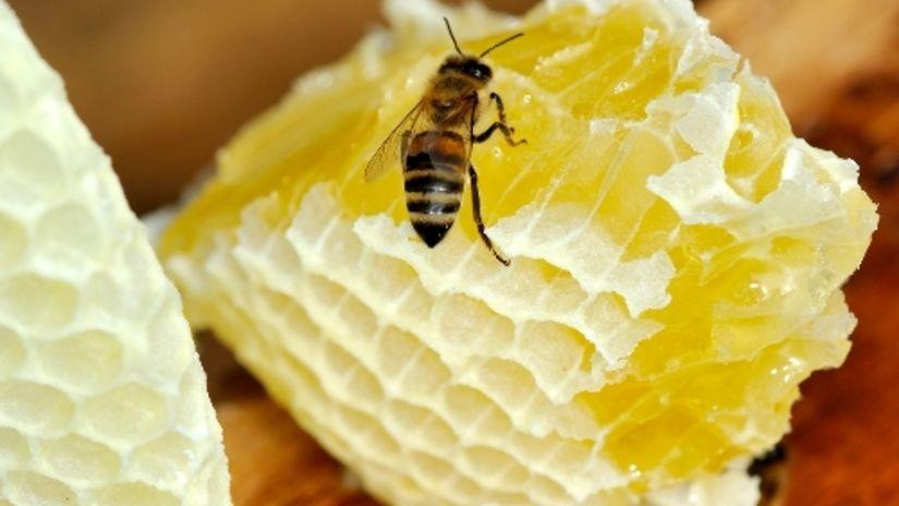 Recept na večnú mladosť? Maska so včelím jedom