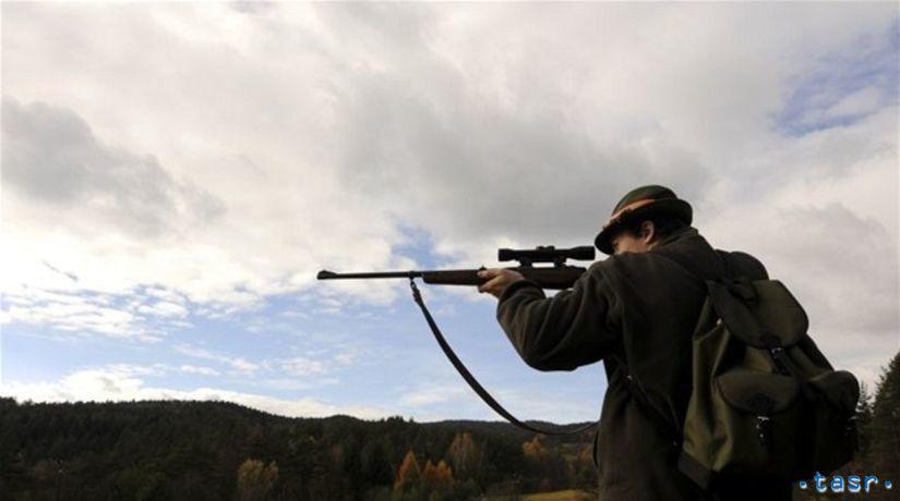 poľovník, puška, poľovačka, príroda, zver
