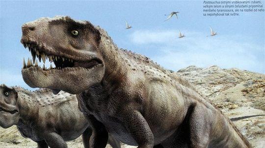 Postosochus