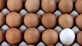 Čie vajcia budú jesť Slováci