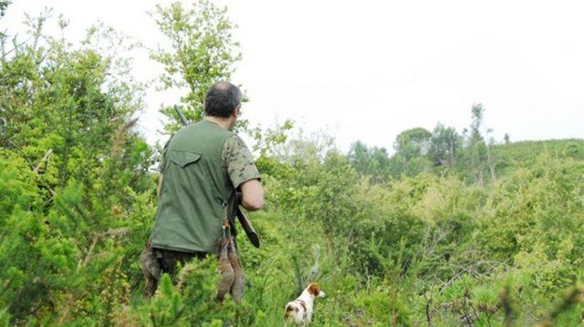 poľovník, pes, lov, les, streľba