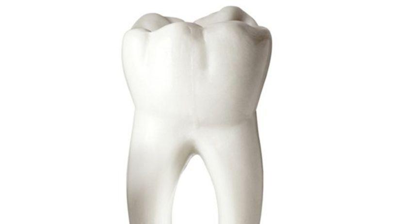 zub, stolička