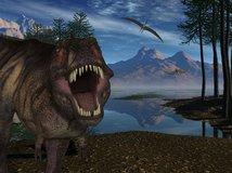 dinosaurus, Tyranosaurus rex