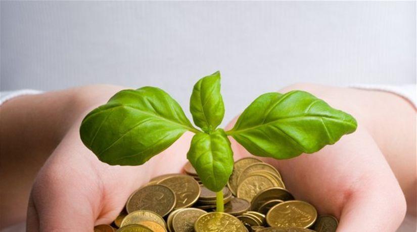 sporenie, vklad, mince, úroky, výnos,...