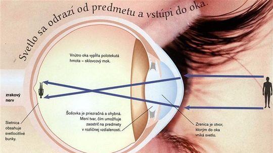 Encyklopédia ľudského tela, Svetlo sa odrazí od predmetu a vstúpi do oka.