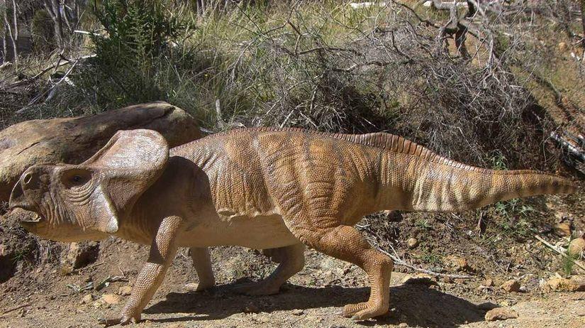 dinosaurus, protoceratops andrewsi
