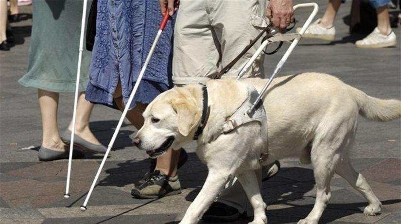 invalid, invalidný, slepec, slepý, postihnutý